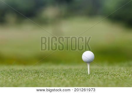 golf ball on a plastic tee .