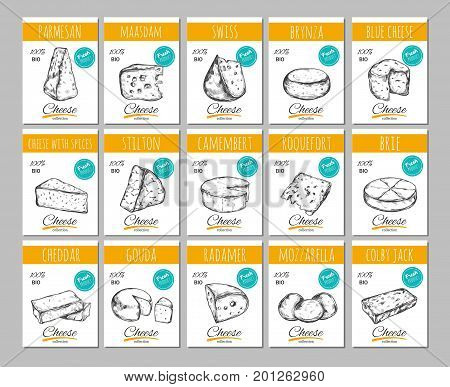 cheese vector hand vector photo free trial bigstock