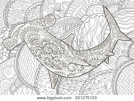 Adult Antistress Coloring Page With Shark Black White Hand Drawn