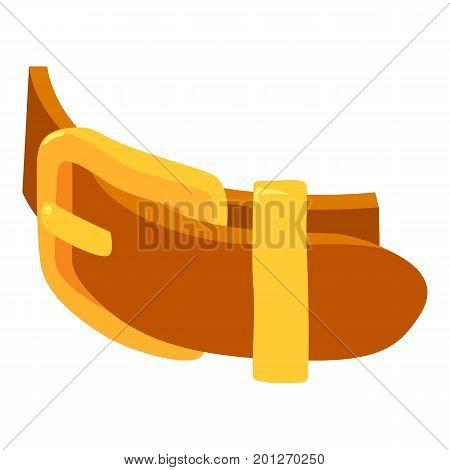 Cool belt icon. Isometric illustration of cool belt vector icon for web