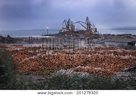 Deforestation ecological problems. Wood preparied for transportation in sea port with cranes. Ecology disaster with trees and wood