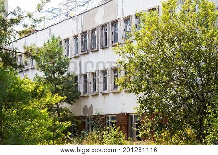 Abandoned City Chernobyl Radioactive Contamination. Overgrown Trees And Plants Of Streets Of Towns A