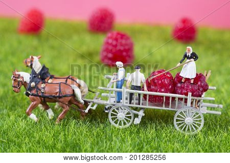An agricultural photo of working toy farmers and a cart, which is full of raspberries.