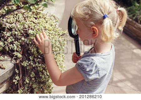 Portrait of cute adorable white Caucasian girl looking at plants flowers through magnifying glass. Child with loupe studying learning nature. Early development education concept.