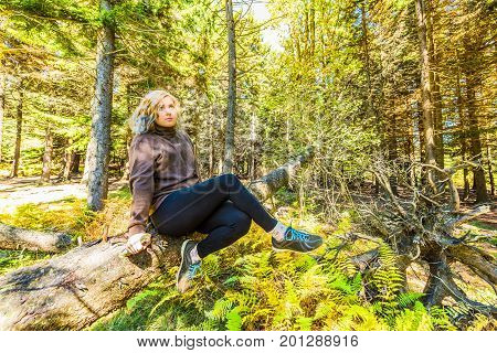 Young Woman Sitting On Fallen Tree Trunk In West Virginia Forest In Leggings