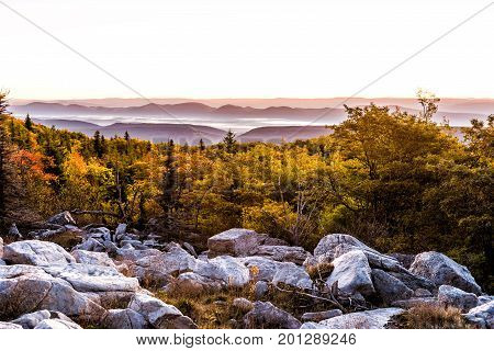 Bear Rocks Sunrise During Autumn With Rocky Landscape In Dolly Sods, West Virginia With Dark Trees