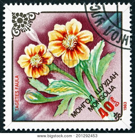 MONGOLIA - CIRCA 1983: a stamp printed in Mongolia shows Flower of Tagetes Faula Flowering Plant circa 1983