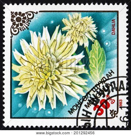 MONGOLIA - CIRCA 1983: a stamp printed in Mongolia shows Flower of Dahlia Flowering Plant circa 1983