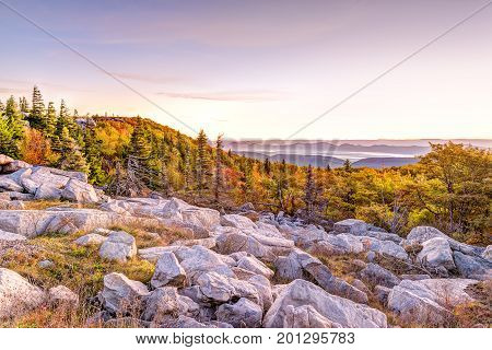 Bear Rocks Sunrise During Autumn With Rocky Landscape In Dolly Sods, West Virginia With Orange Trees