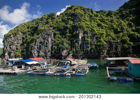 traditional vietnamese boats and floating village among beautiful limestone rocks of Lan Ha bay, the southern edge of Ha Long bay, Vietnam