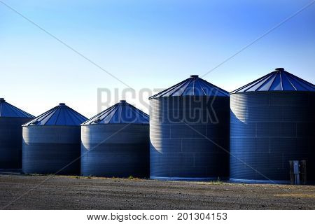 Bain silos on farm for farming and storage of wheat