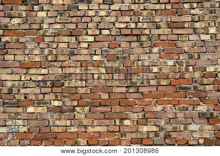 Bricks texture for designers and 3d artists