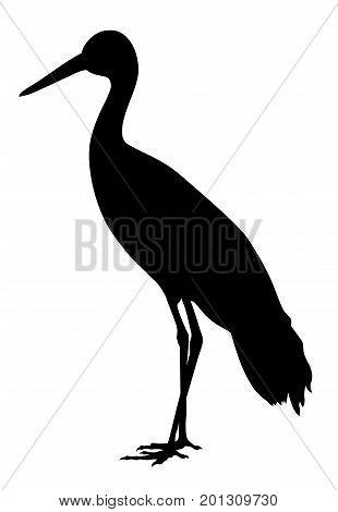 Vector illustration of white stork silhouette  on white background