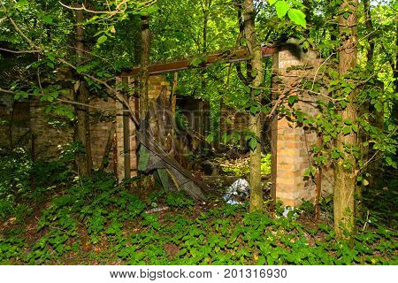 Destroyed houses in which people lived in a dead radioactive zone. Consequences of the Chernobyl nuclear disaster and vandalism August 2017.