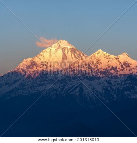 Mt. Dhaulagiri, Nepal. Beautiful Mountain Peak In Gentle Morning Lights. Himalayas Mountain Peak Dur
