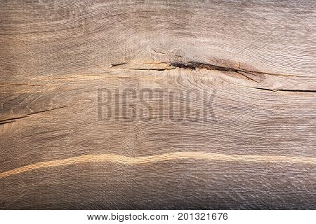 Background with prehistoric scratched wood bog oak texture. Close-up photo. High resolution photo.