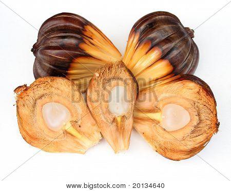 Atap Seeds