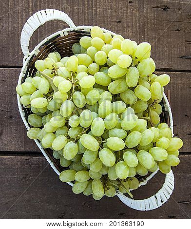 Very fresh grapes in the basket, bunch of grapes on the wooden floor, grape bunch of pictures in different concepts.Natural grape clusters, vineyards and grapes,