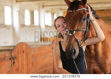 Taking care of animals love and friendship concept. Jockey young girl petting and hugging brown horse in stable