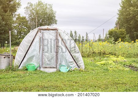 greenhouse in the garden, plastic watering cans, sunflowers backgriund