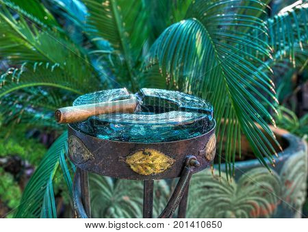 Cigar resting in Glass Ashtray in a tropical setting