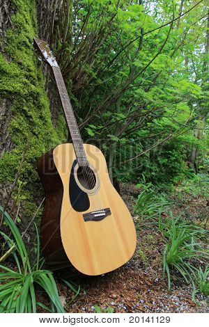 Acoustic guitar leaning against a moss covered tree.