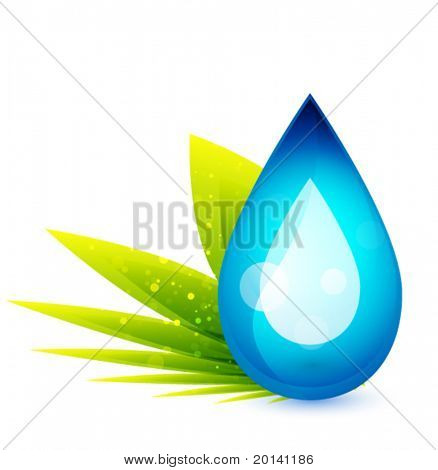 Vector droplet and plant. Green concept