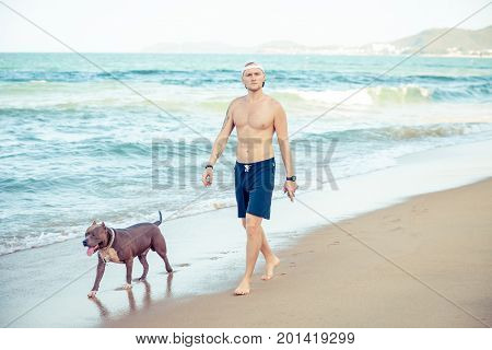 Young man with dog american pit bull terrier walking on sea shore. Man and dog strolling on seaside.