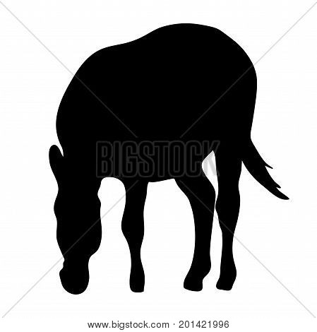 View on the silhouette of a zebra - digitally hand drawn vector illustraion
