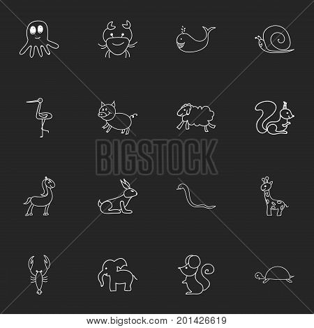 Set Of 16 Editable Animal Doodles. Includes Symbols Such As Swine, Squid, Slug And More