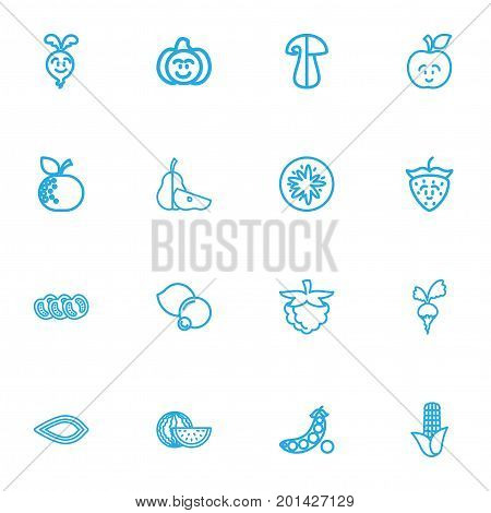 Set Of 16 Editable Kitchenware Outline Icons. Includes Symbols Such As Corn, Orange, Fresh Fruit And More