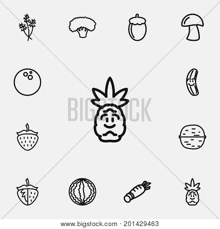 Set Of 12 Editable Cookware Outline Icons. Includes Symbols Such As Muskmelon, Acorn, Cocos And More