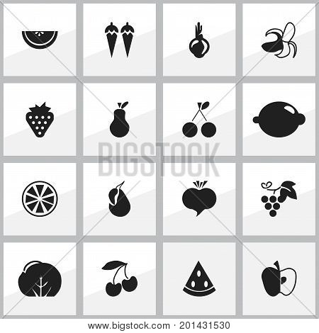 Set Of 16 Editable Berry Icons. Includes Symbols Such As Cauliflower, Sativum, Cantaloupe And More