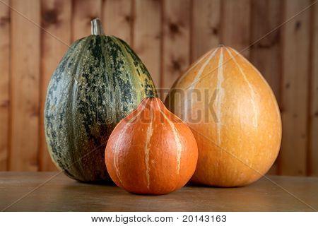 Vegetable Marrow And Pumpkins