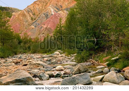 Martian landscape of the Altai Mountains. Colorful hills and green trees with a mountain river. Siberia. Altai Russia.