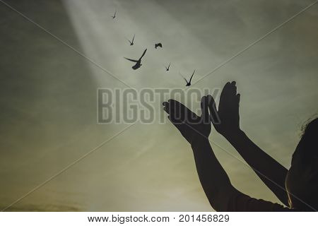 silhouette people making hand as bird and release birds to be freedom and free