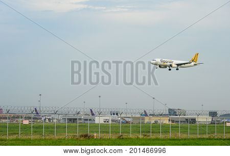 Bangkok Thailand - July 30 2017: Tiger airways(Tigerair) Plane landing to runways at suvarnabhumi international airport in Bangkok with copy space. This airport is one of the most populated airports in the world.