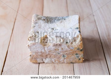 mold bread that expired on wooden board