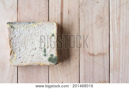 closeup mold bread that expired on wooden board