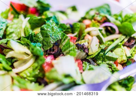 Macro Closeup Of House Salad In White Plate With Green Romaine Lettuce, Olives And Tomatoes