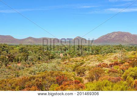 View of Wilpena Pound Range from the Wangara Lookout track in the Flinders Ranges - Wilpena Pound, SA, Australia