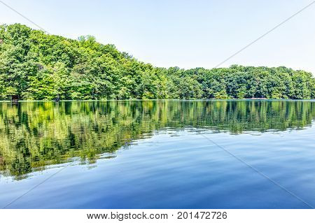 Burke Lake Trees Forest Woods Reflection In Summer On Bright Day With Clear Water