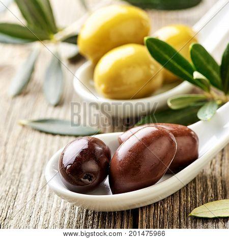 Different kind of olives green olives, kalamata olives and olive branch on wooden light table. Variations of olives.