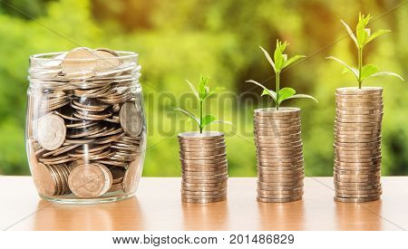 coins in jar and step of coins stacks with tree growing on top nature background money saving and investment or family planning concept over sun flare silhouette tone.