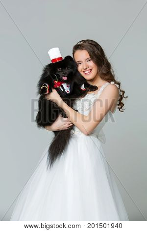 Beautiful young woman bride in dress holding handsome spitz groom in suit, red bow and silk hat on gray background. dog wedding. copy space.