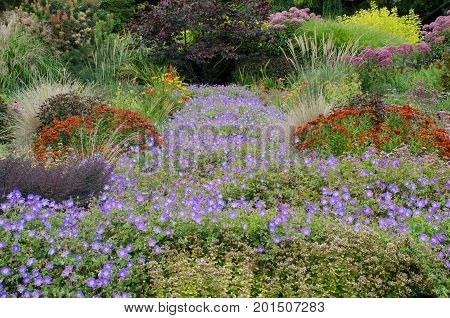Traditional English Garden with perennials in border