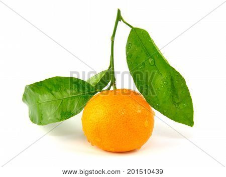 Mandarin orange with green leaf isolated on white background
