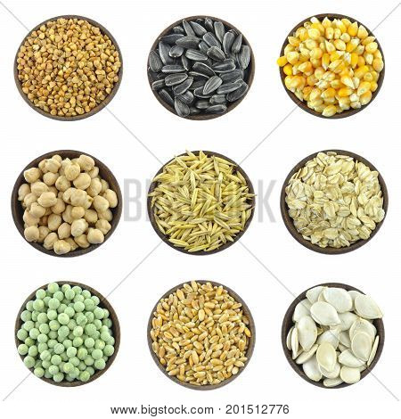 Grains, cereals, seeds - collection of basic food
