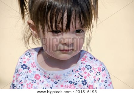 Portrait Of A Smiling Little Girl With Pigtails