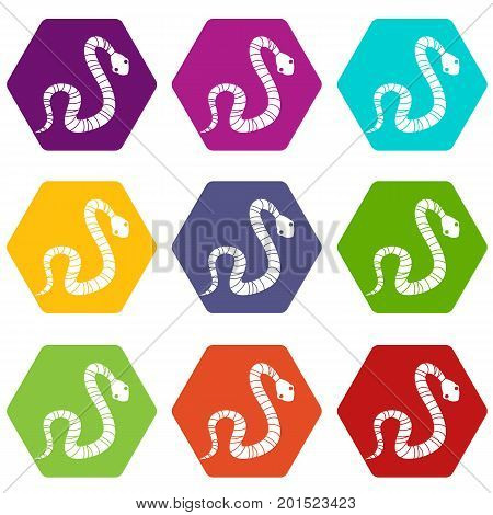 Striped snake icon set many color hexahedron isolated on white vector illustration